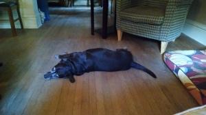 emma resting